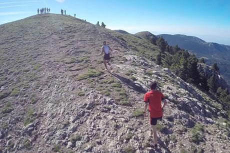 Berga Trail 2017