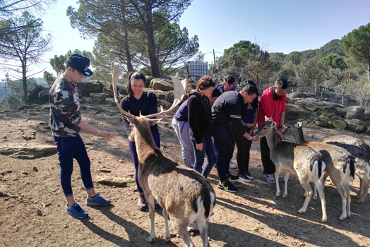 Visita centro natura Navàs